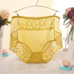 L-XL Women Sexy See Through Mesh Panties Ultrathin Lace Breathable Underwear