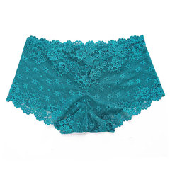 Women Sexy Supersoft Full Lace Transparent Stretchy Seamless Traceless Panty Underwear