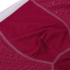 Ice silk Modal Underwear Antibacterial Breathable Mesh U convex Pouch Boxers For Men