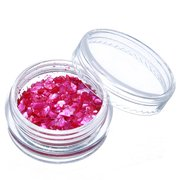 12 Colors Glitter Shell Powder Nail Art Decoration Set