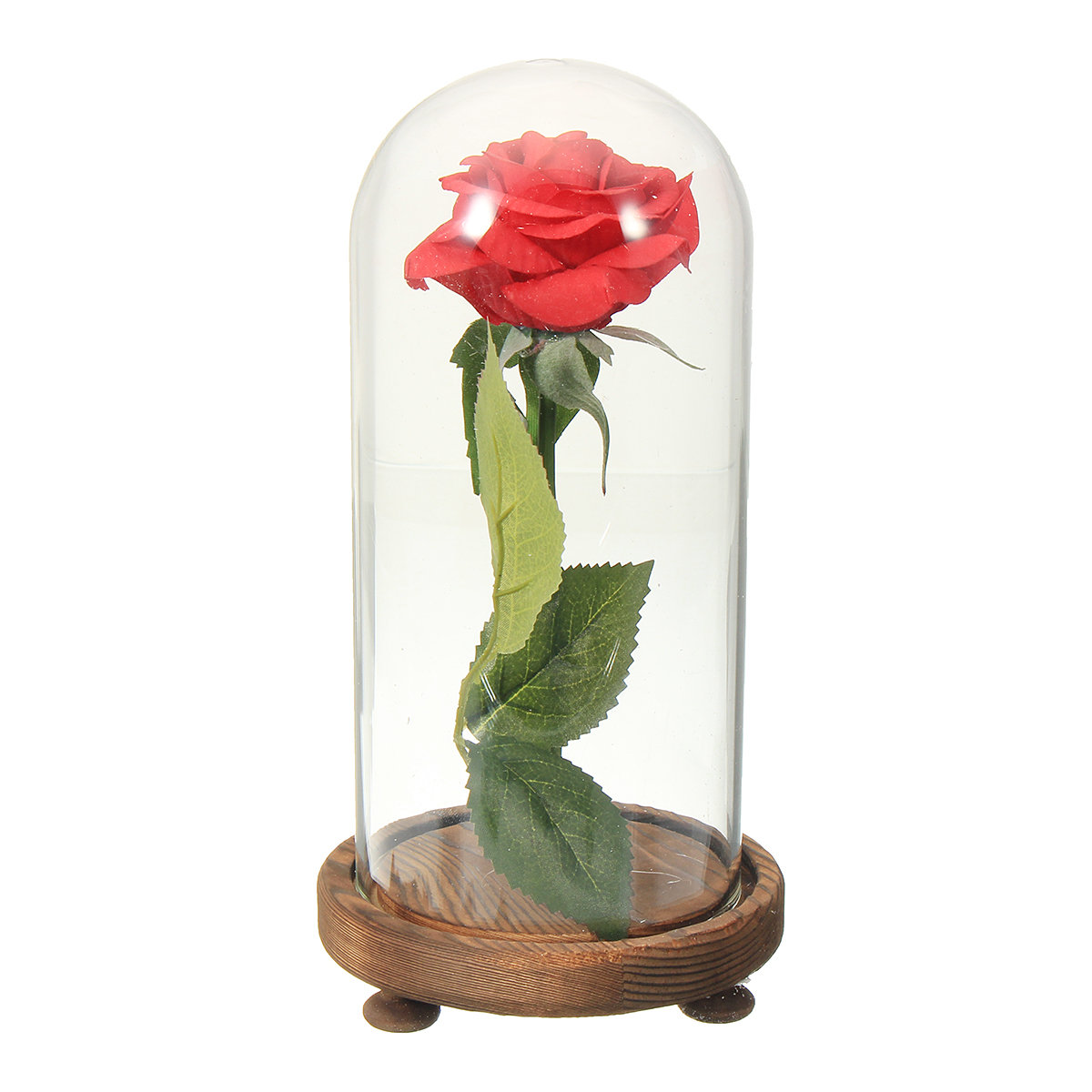 Beauty And The Beast The Little Prince Glass Cover Fresh Preserved