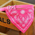 Cute Small  Pet Dog Cat Bandana Scarf Collar Neckerchief